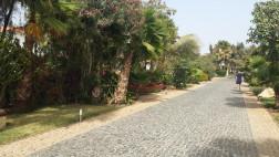 walkway to beach 1